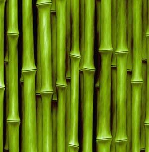 materassi bambu