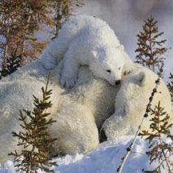 materasso invernale e estivo